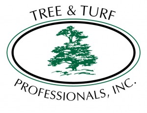 Tree and Turf Logo